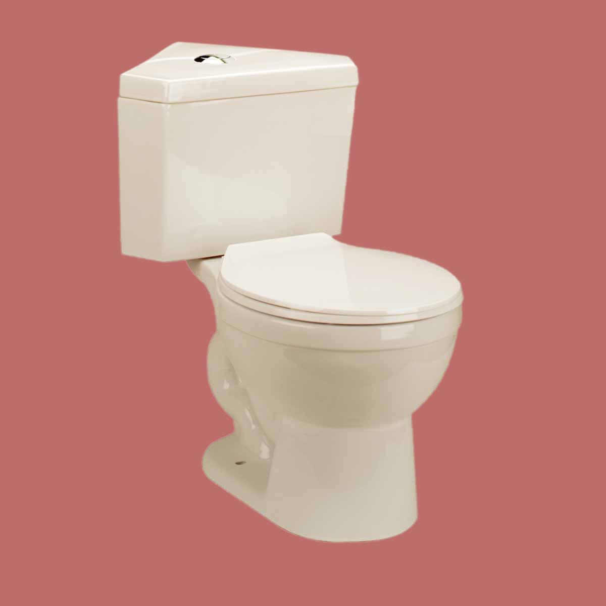 Corner Toilet : Toilet Bone Corner Dual Flush Round